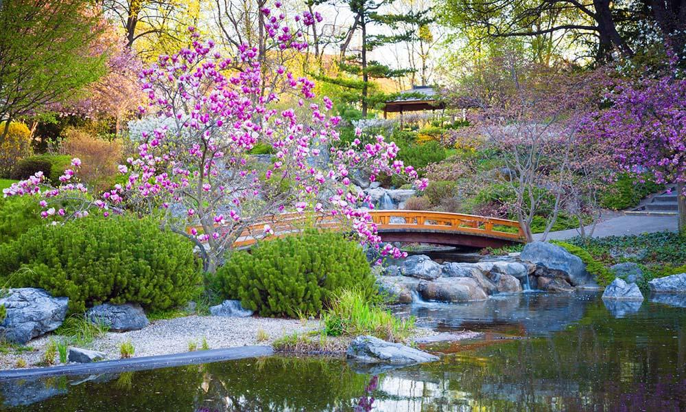 Comment transformer son jardin en un jardin japonais - Comment aller au jardin du luxembourg ...