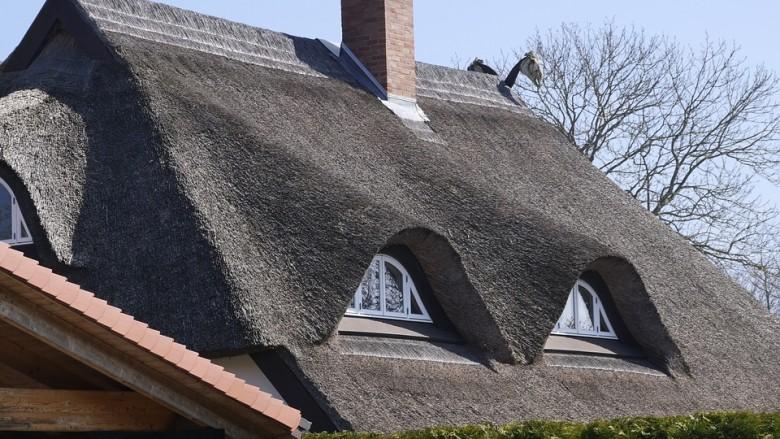 Tout savoir sur la toiture en chaume - Rénovation et ...