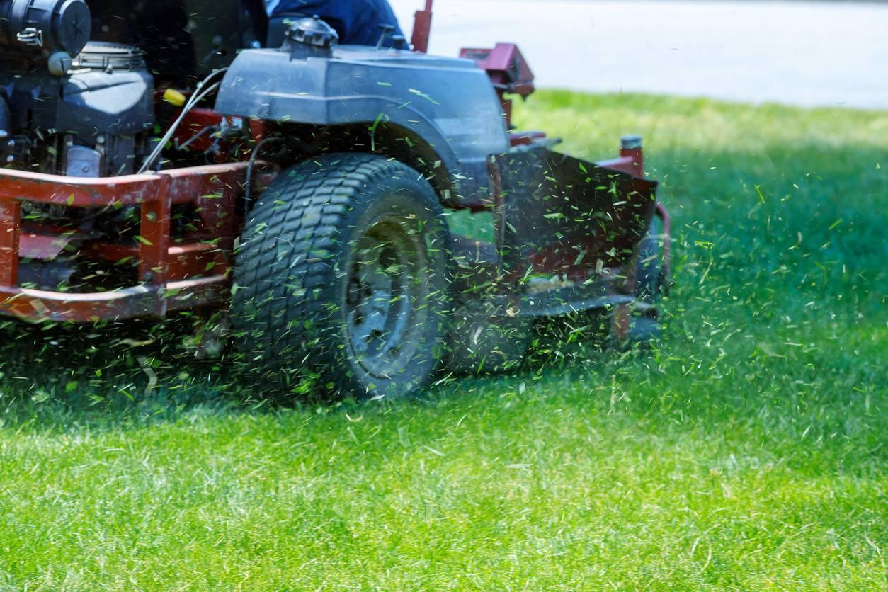 entretien du jardin et du gazon