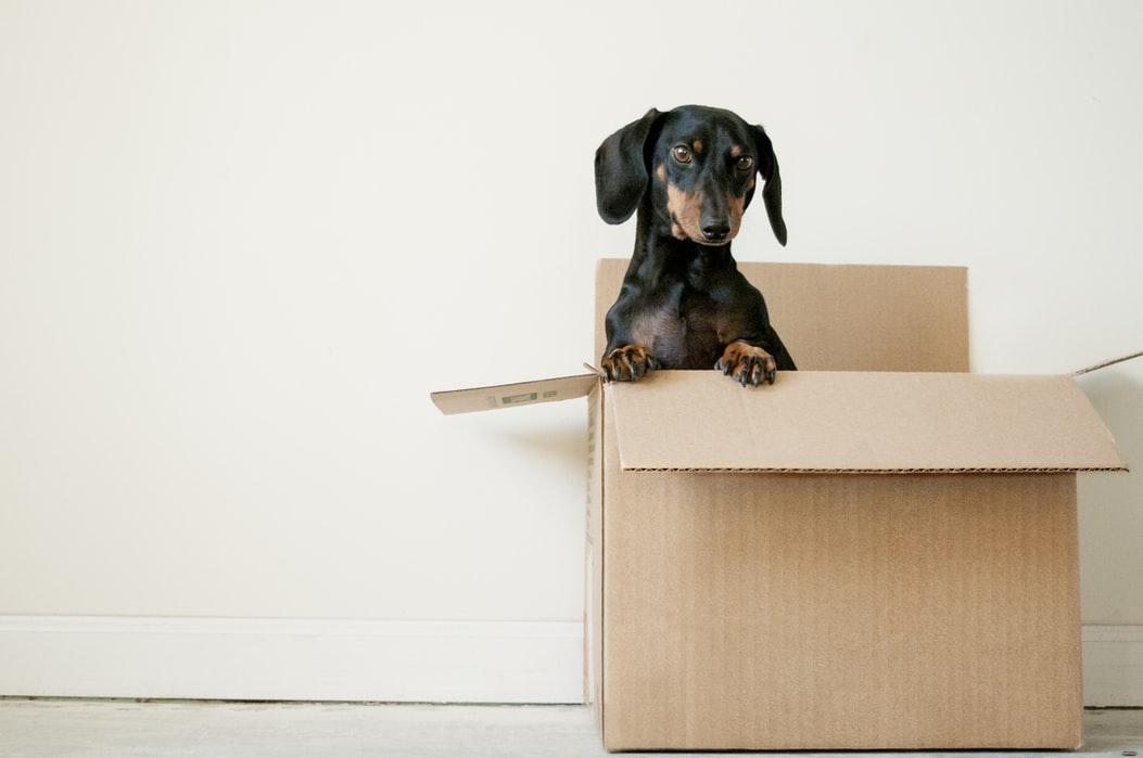 ranger sa maison avant un déménagement